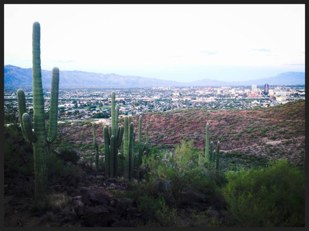 View of Tucson from the mountains to the west of the city...
