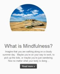 """Matt, is a 4th year medical student who has adopted mindfulness practices for himself and is writing a blog about his experiences. """