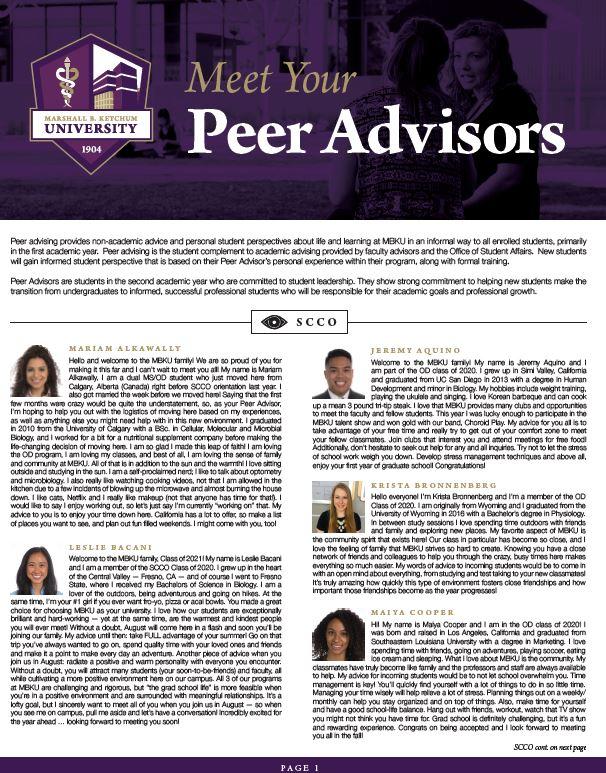 PDF Peer Advisor Bronnenberg