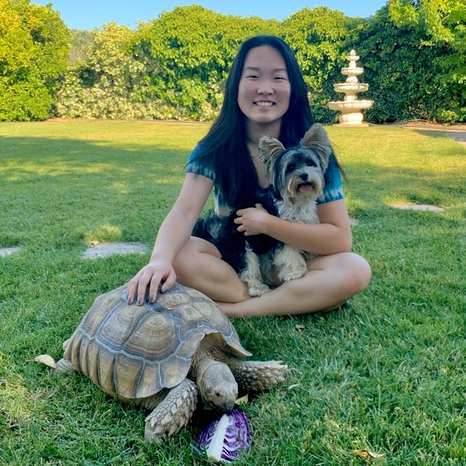 Tiff_Bandit the puppy_andBuddy the tortoise